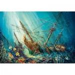 Puzzle   Ocean Treasure
