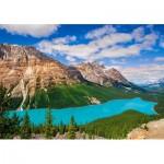 Puzzle   Peyto Lake, Canada