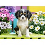 Puzzle   Spaniel Puppy in Flowers