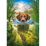 Puzzle   Swimming Dog