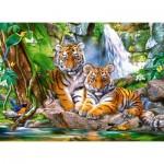 Puzzle   Tiger Falls
