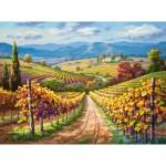 Puzzle   Vineyard hill