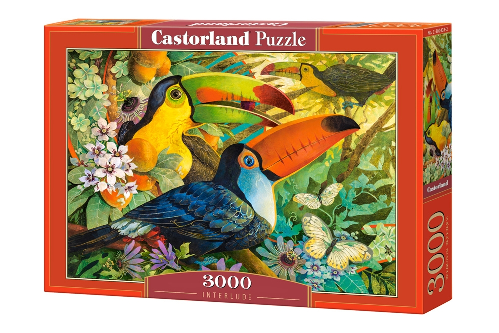 puzzle david galchutt interlude castorland 300433 3000 pieces jigsaw puzzles birds jigsaw. Black Bedroom Furniture Sets. Home Design Ideas