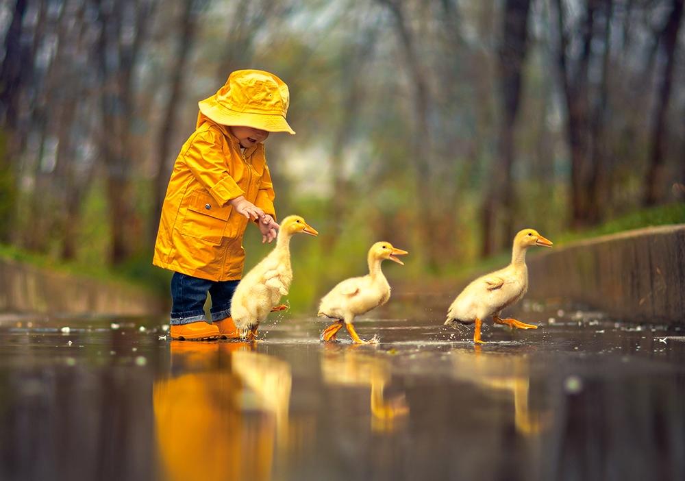 Puzzle Rainy Day Friends Castorland 52264 500 Pieces