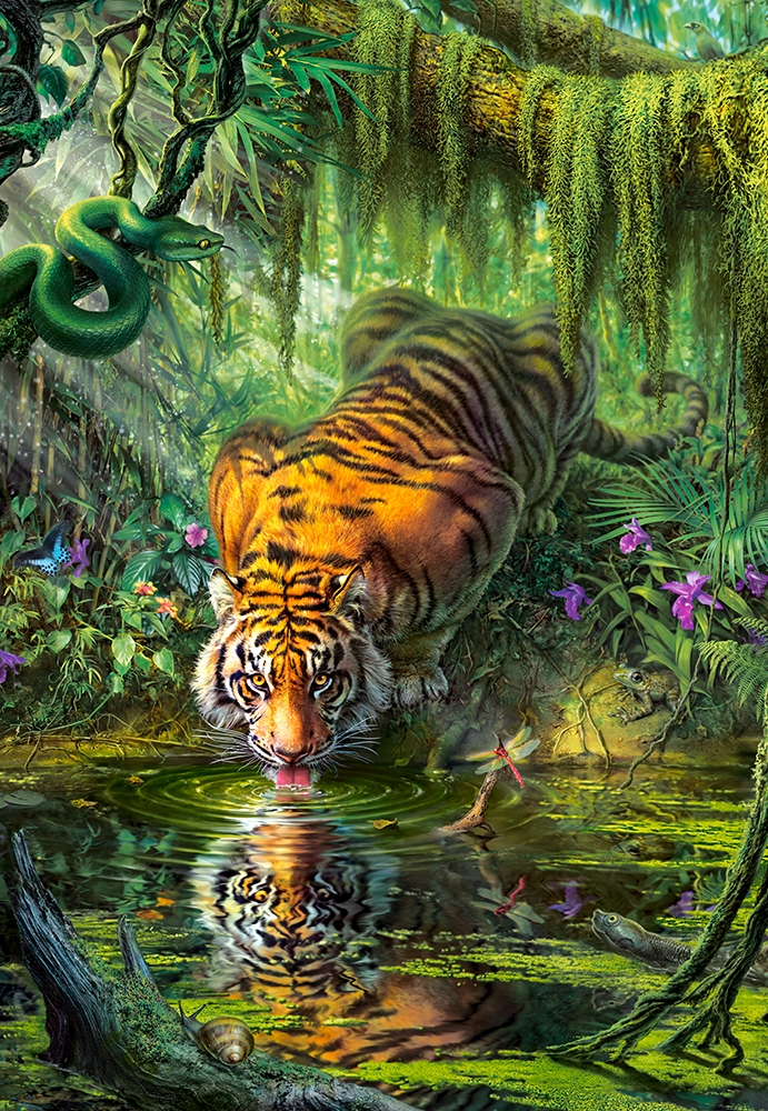 Puzzle Tiger In The Jungle Castorland 103935 1000 Pieces