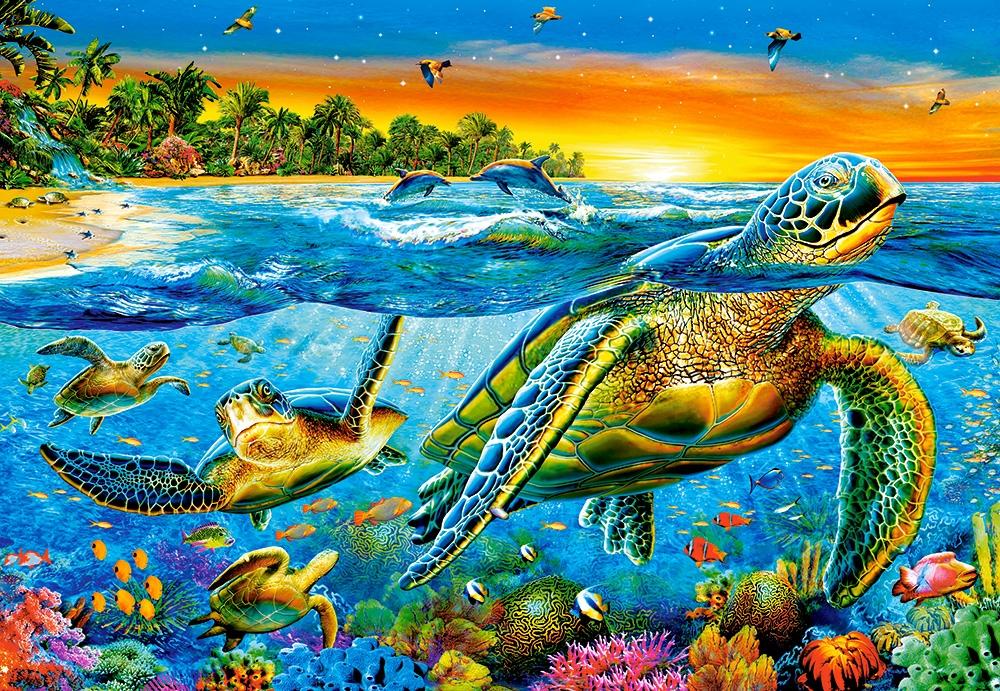 Underwater Turtles