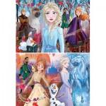 2 Puzzles - Frozen 2