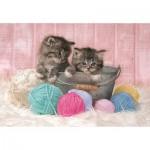 Puzzle  Clementoni-27115 Sweet Kittens