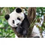 Puzzle  Clementoni-27997 WWF - Panda