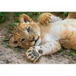 Puzzle  Clementoni-29745 WWF - Lion cub