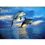 Clementoni-30139 Jigsaw Puzzle - 500 Pieces - Dolphins