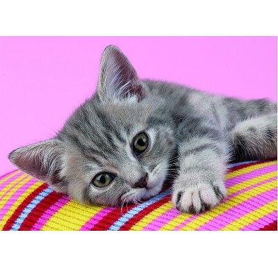Clementoni-30362 Jigsaw Puzzle - 500 Pieces - Affectionate Little Cat