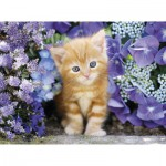 Puzzle  Clementoni-30415 Cat in Flowers