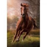 Puzzle  Clementoni-31811 Horse