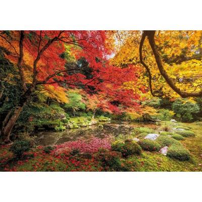 Puzzle Clementoni-31820 Autumn Park