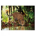 Clementoni-32537 Jigsaw Puzzle - 2000 Pieces - The Leopard