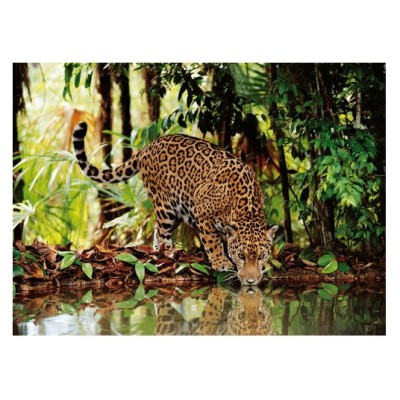Clementoni-32537 Jigsaw Puzzle - 2000 Pieces - The Leopard
