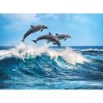 Puzzle  Clementoni-35055 Dolphins