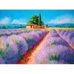 Puzzle  Clementoni-35073 Lavender Field
