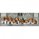 Clementoni-39076 Jigsaw Puzzle - 1000 Pieces - Panoramic - Beagles