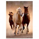 Clementoni-39168 Jigsaw Puzzle - 1000 Pieces - Wild Horses Galloping