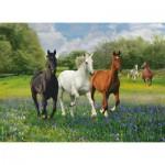 Puzzle  Clementoni-39255 Horses