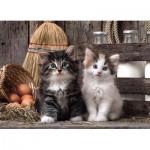 Puzzle  Clementoni-39340 Kittens
