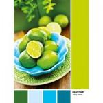 Puzzle  Clementoni-39492 Pantone - Juicy Limes