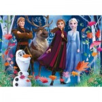 Puzzle   3D Effect - Frozen 2