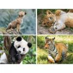 4 Progressive Puzzles - Wild Animals (20,60,100,180 Pieces)