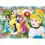 Jewels Puzzle - Disney Princess