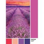 Puzzle   Pantone - Purple