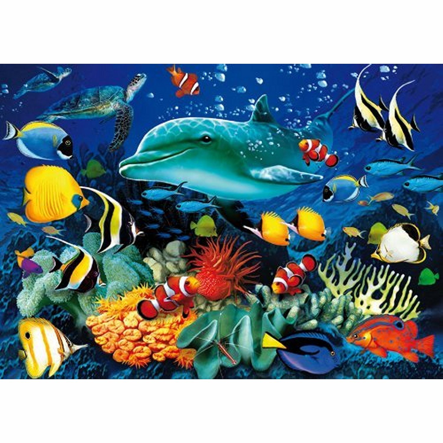Jigsaw Puzzle - 1000 Pieces - 3D - Under Water Life ...