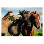 Puzzle  Dino-47226 XXL Pieces - Colorful Horses