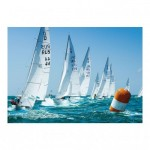 Puzzle  Dino-53194 Racing Sailboat
