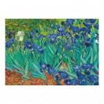 Puzzle  Dino-53216 Vincent Van Gogh - Irises