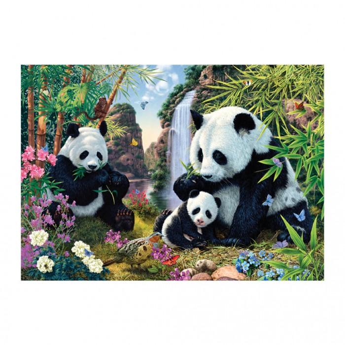Secret Puzzle - Pandas