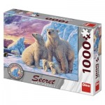 Dino-53278 Secret Puzzle - Polar bears