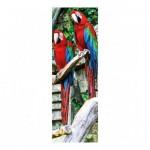 Puzzle  Dino-54526 Parrots