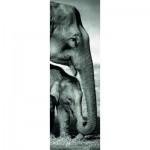 Puzzle  Dino-54536 Elephants