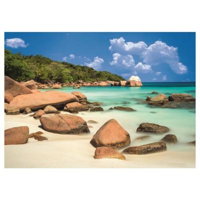 Puzzle Dino-56122 Beach