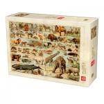 Puzzle  Deico-Games-76793 Encyclopedia Wild Animals