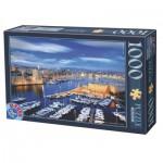 Puzzle  Dtoys-62154-EC16-(74720)
