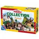 Puzzle  Dtoys-63069-AF-02