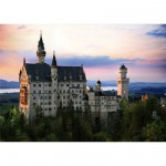 DToys-64301-NL07 Jigsaw Puzzle - 1000 Pieces - Nocturnal Landscapes : Neuschwanstein Castle, Germany