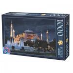Puzzle  Dtoys-64301-NL11