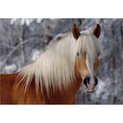 DToys-65933-HH01 Jigsaw Puzzle - 239 Pieces - Horses Magic : Haflinger I