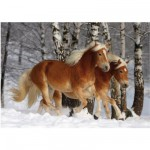 DToys-65933-HH03-(70487) Jigsaw Puzzle - 239 Pieces - Horses Magic : Halflinger III