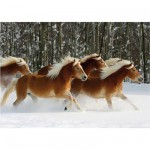 DToys-65933-HH04 Jigsaw Puzzle - 239 Pieces - Horses Magic : Haflinger IV