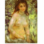 DToys-66909-RE04 Jigsaw Puzzle - 1000 Pieces - Renoir : Naked in the Sun